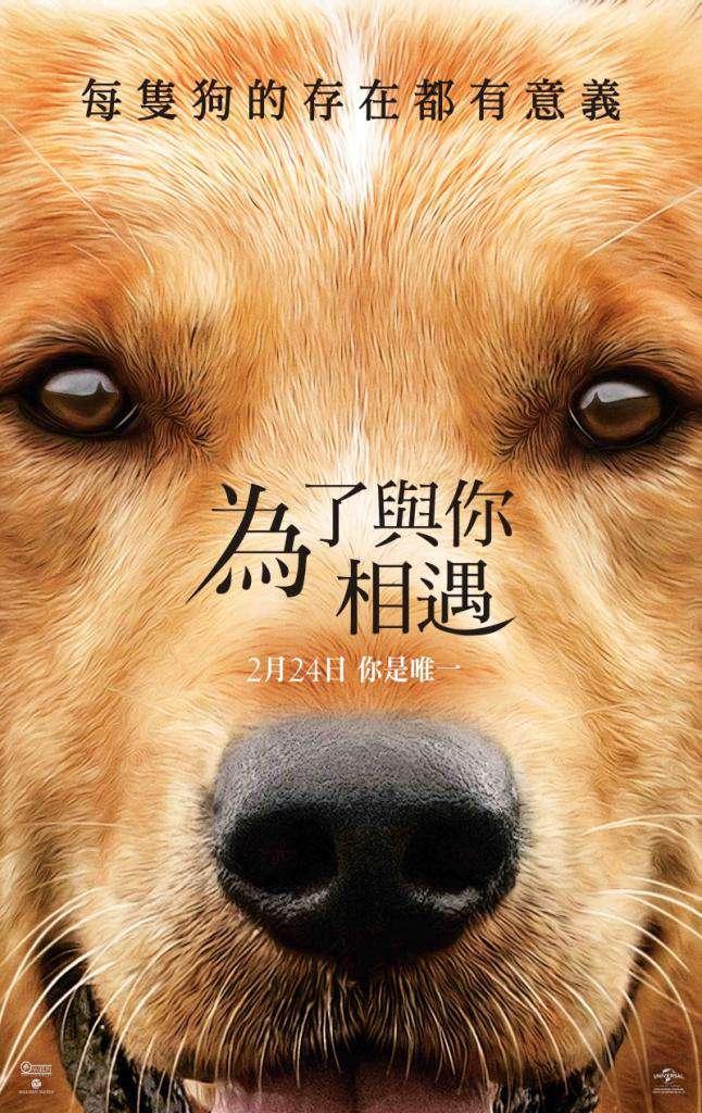 為了與你相遇_A Dog's Purpose_電影海報