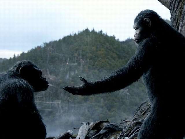 猩球崛起:黎明的進擊_Dawn of the Planet of the Apes_電影劇照