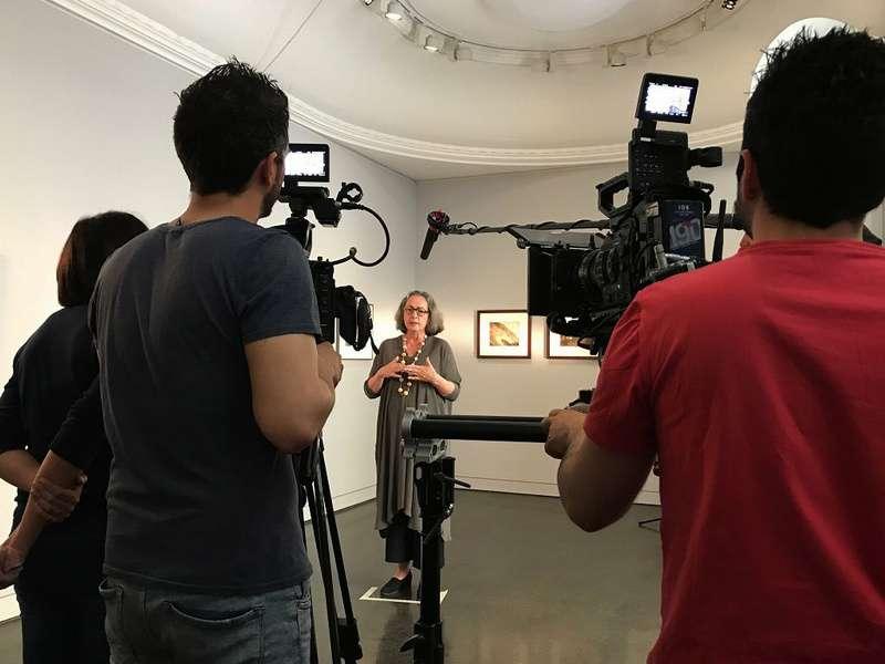 克林姆與席勒:靈慾之間_Klimt and Schiele: Eros and Psyche_電影劇照