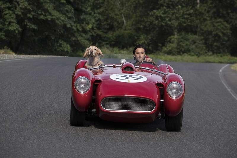 我在雨中等你_The Art of Racing in the Rain_電影劇照