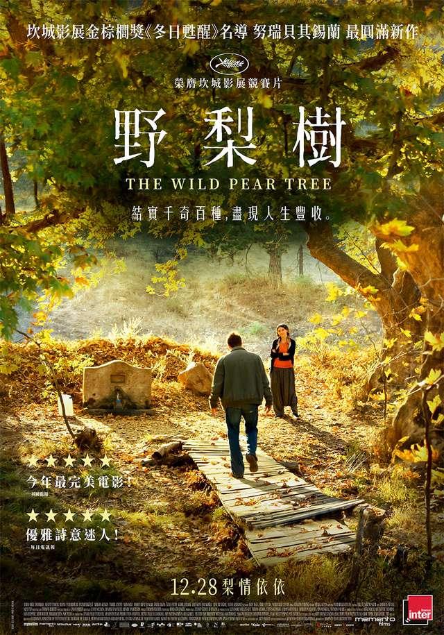 野梨樹_The Wild Pear Tree_電影海報