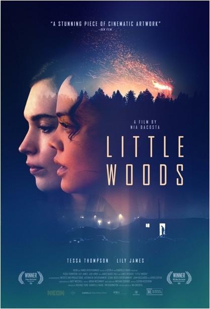 橫越生死線_Little Woods_電影海報