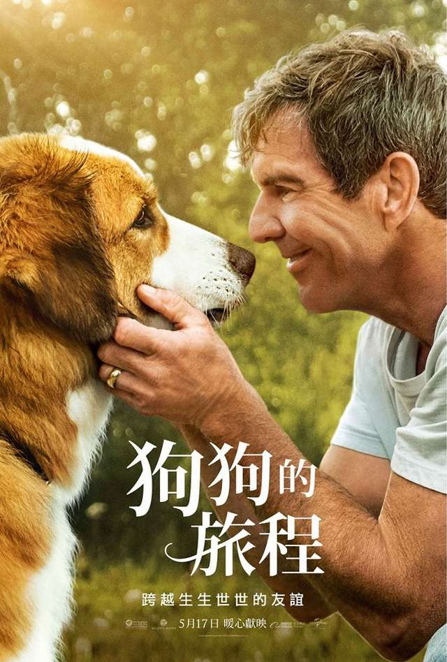 狗狗的旅程_A Dog's Journey_電影海報