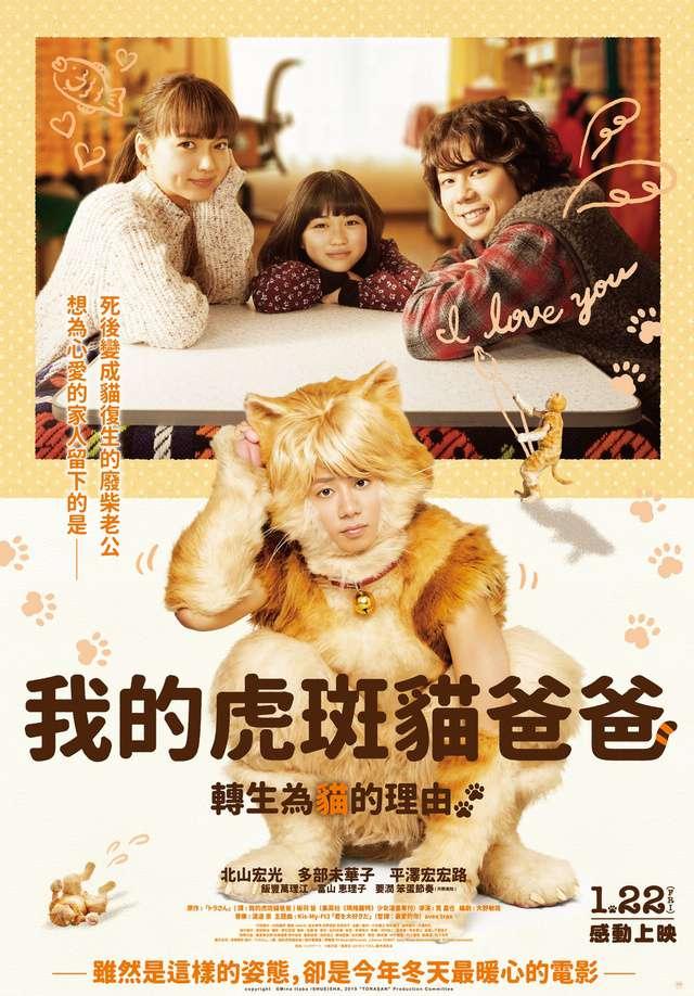 我的虎斑貓爸爸_My Life as a Cat_電影海報
