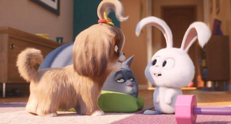寵物當家2_The Secret Life of Pets 2_電影劇照
